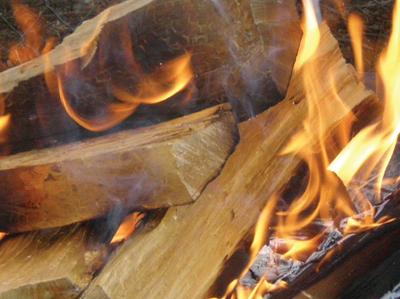 خشب الزان الحطب